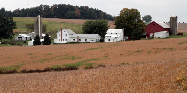 Typical Holmes County Farm Buildings