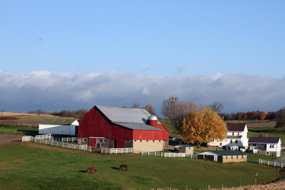 Uncle Joe's Farm