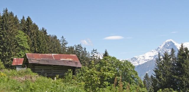 Marlandphotos-Scenic-Alpine View