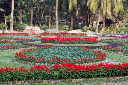 Marlandphotos-blog-photography-Flowers-Parliament-Bangladesh-Garden