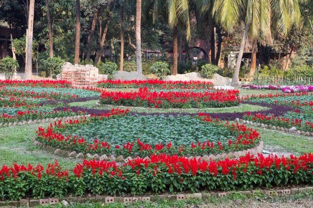 Marlandphotos-blog-photography-Flowers-Parliament-Bangladesh-Garden