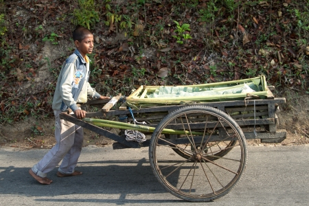 marlandphotos-blog-photography-cart-produce-SriMongol