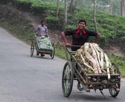 marlandphotos-blog-photography-bangladesh-syhlet-SriMongol