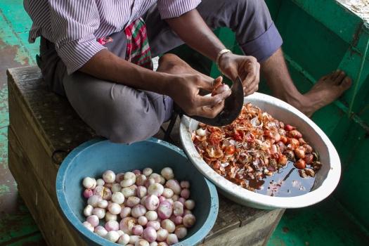 marlandphotos-blog-photography-food-onions