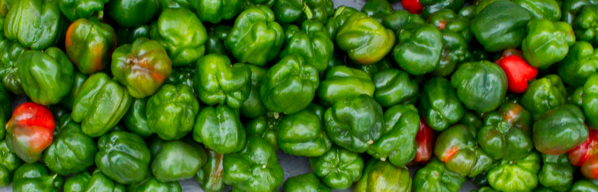 Green Peppers